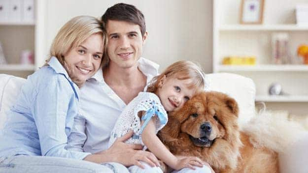 Wills & Trusts dog-young-family Direct Wills Streatley